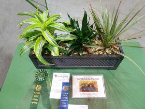 2018 CT Flower Show Horticulture Exhibit Photo